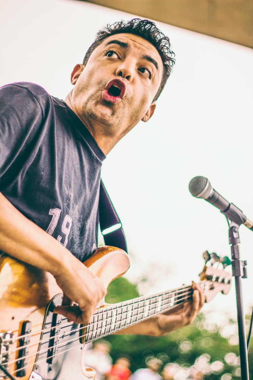 Paulinho Nogueira Bossa Nova Guitar